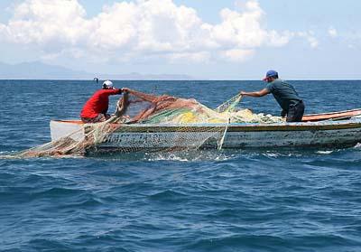 20121120135500-pesca.jpg